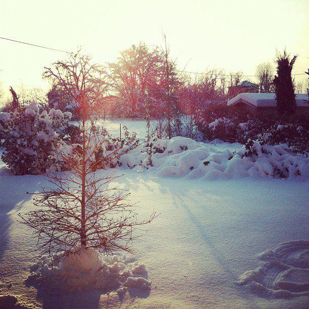 La neve per esempio